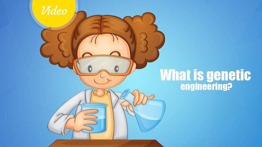 What is genetic engineering?<span class=